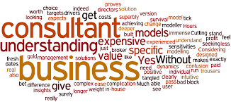 Need Of A Professional Business Consultant