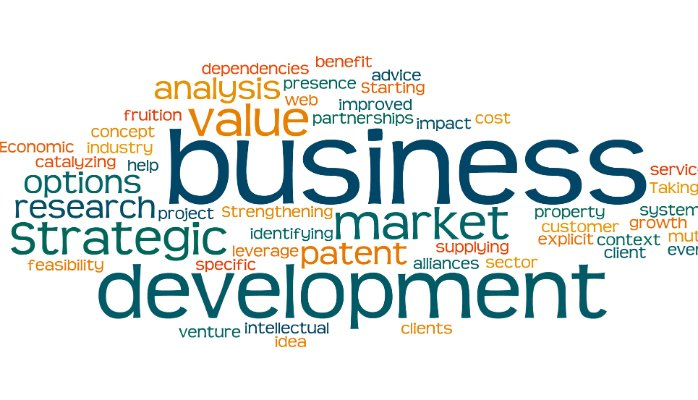 Seek Advice For Business Development