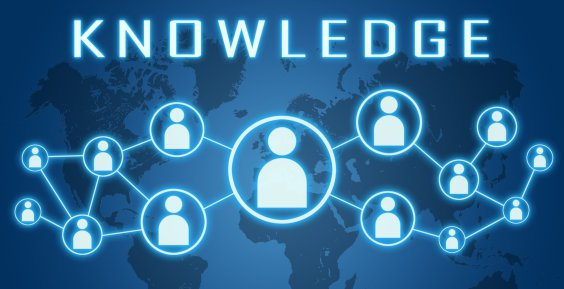 Online Business Consulting: The Need For Business Knowledge