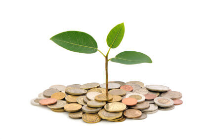 Financing Small Business Enterprises With Microloans