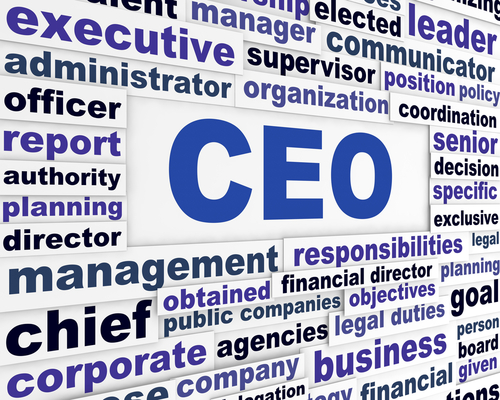 How does a company choose a CEO