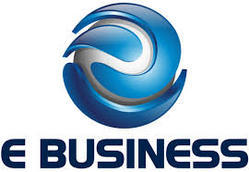 Getting e-business consultants in India